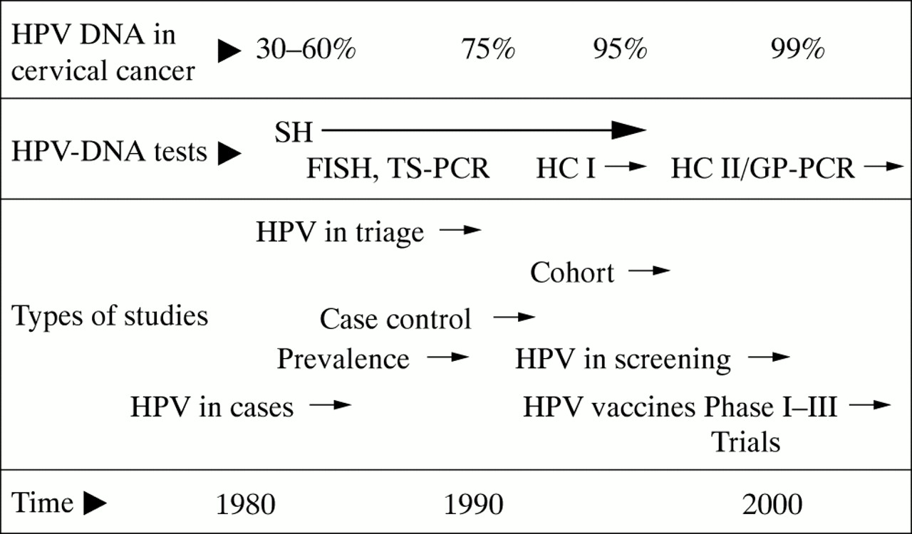 The Causal Relation Between Human Papillomavirus And Cervical Cancer