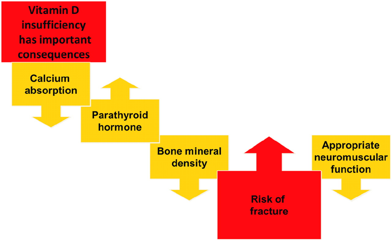 The Pathogenesis Diagnosis Investigation And Management Of