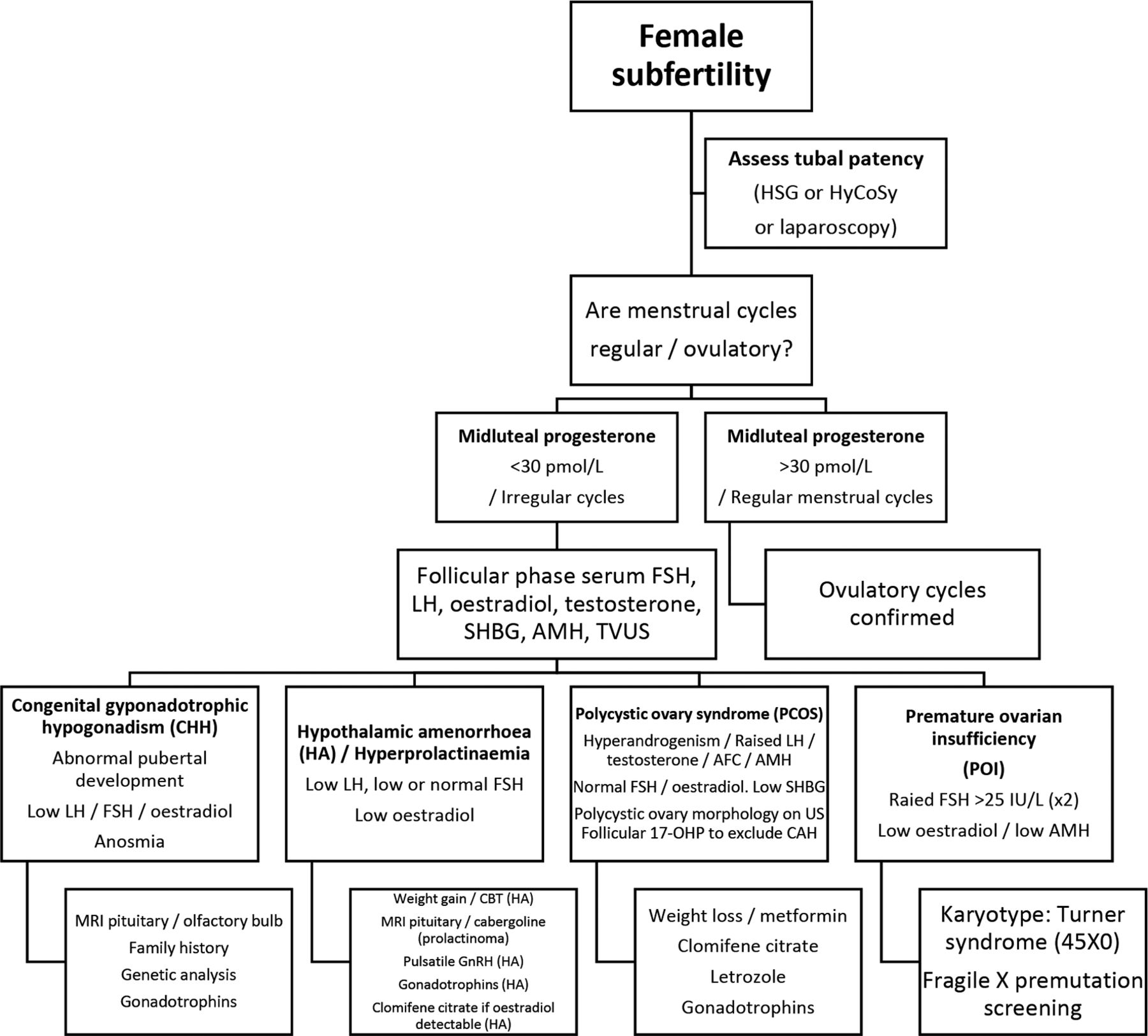 Investigation and management of subfertility | Journal of