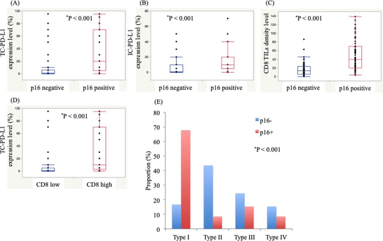 Prognostic impact of p16 and PD-L1 expression in patients
